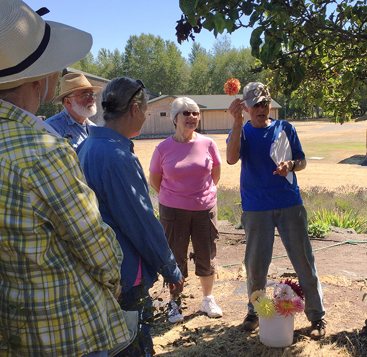 "Lee Bowen teaching about dahlias at our ""Work to Learn"" Party. photo by Renne Emiko Brock"